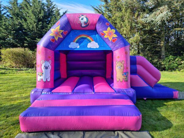 Unicorn & Llama Castle With Slide